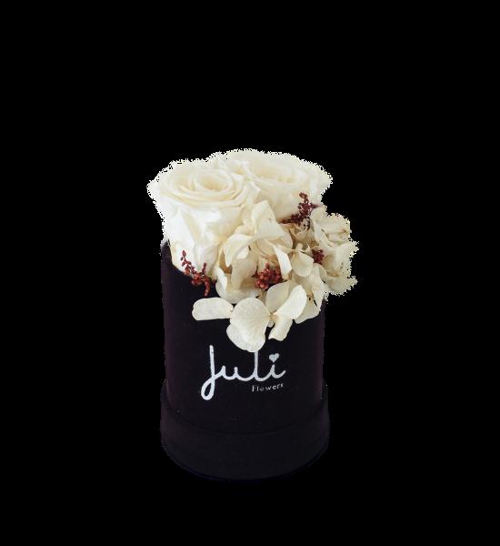 Creme Hortensie - XS rund schwarz/lila